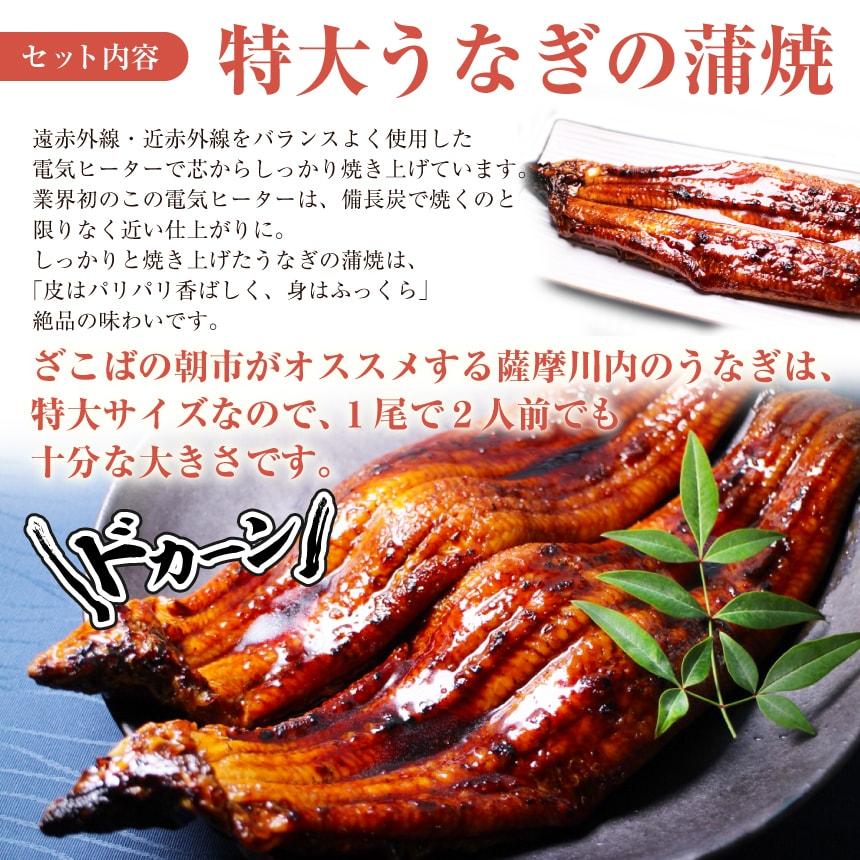 特大うなぎ(鰻・ウナギ)の蒲焼は皮はパリパリ香ばしく、身はふっくら