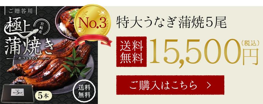 特大うなぎ(鰻・ウナギ)蒲焼5尾